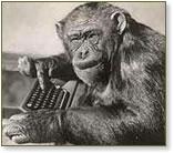 Monkey and Keyboard