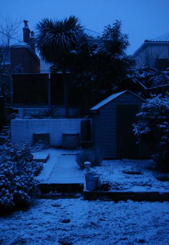 Snow 2009-02-02 010