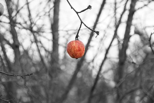 Rumsiskes_2008 11 22_0025_edited-1.jpg