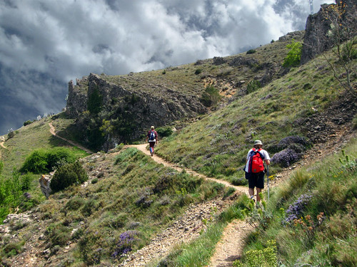 Camino de la cima