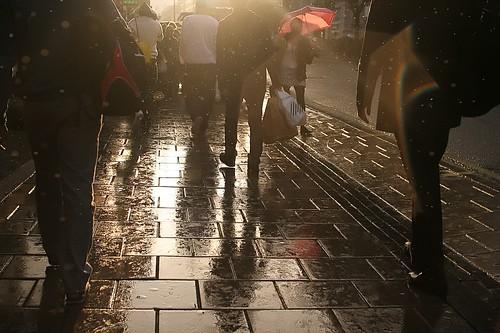 Rain loves sun