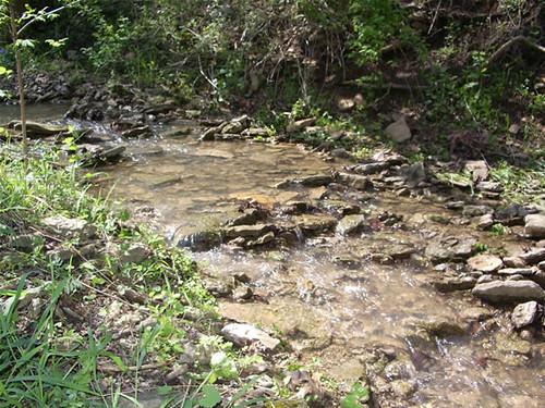 Creek Outside Cabin