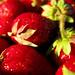 Strawberries - DSM Farmers Market ~~~Explore June 25, 2009