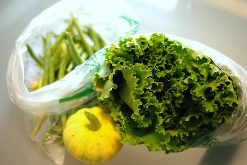 Harvest July 23rd, 2009