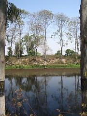 A lake on the way to Kaziranga
