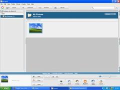 Picasa Main screen