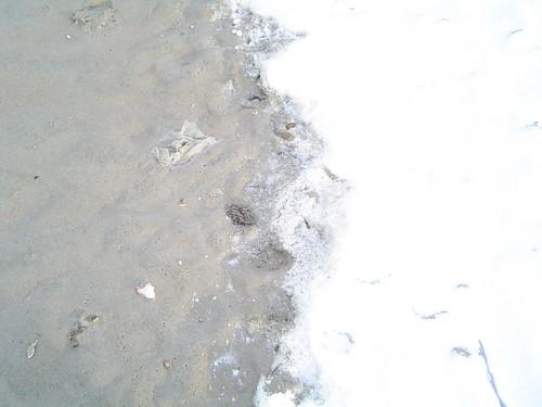 sneeuwgrens