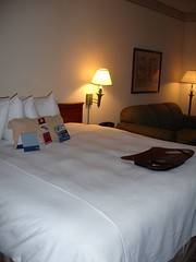 Hotel Room, Hampton Inn & Suites at the University, Nashville TN