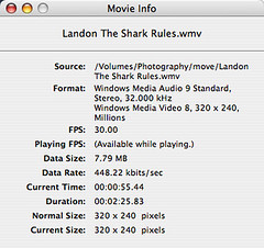 QuickTime playback info