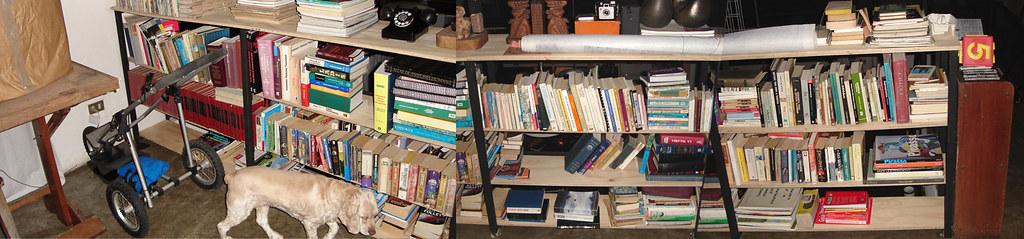 mis-libros