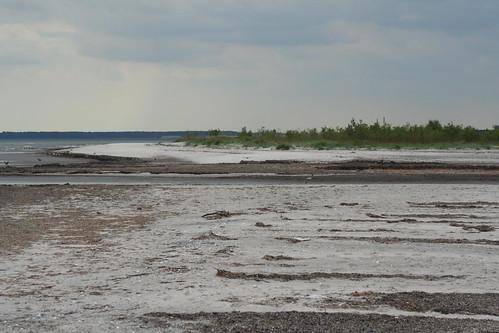 Staunings Ø og Ølsemagle Revle