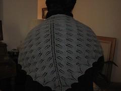 Kiri Back