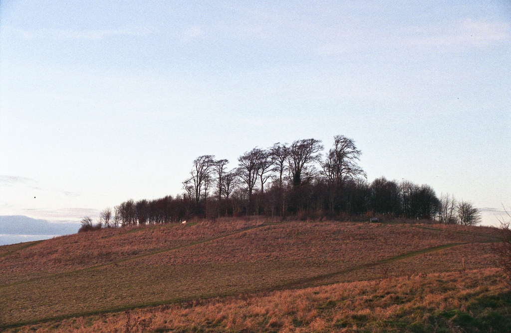 Round Hill | Wittenham Clumps