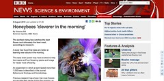 Honeybee story as displayed on mobile with 320 pixels width.