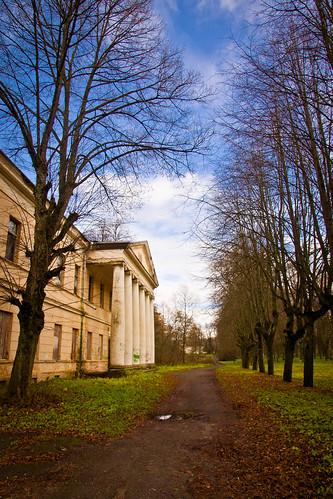 Alėja šalia rūmų | Alley near manor house