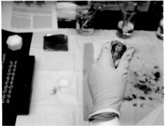 WARNING, GROSS: Animal Research, August 2000, Northwestern University