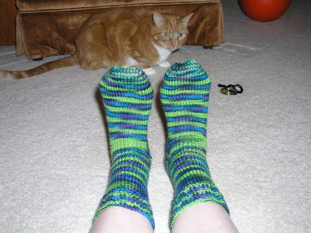 Socks & Cat