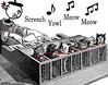 sharon's-cat-piano