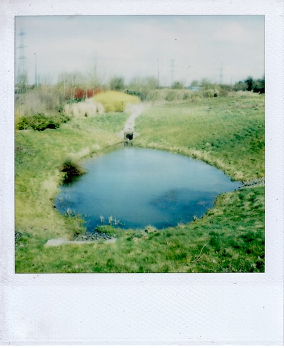little pond - big fish?