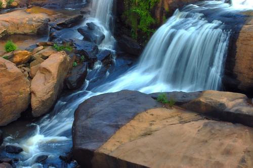 reedy falls
