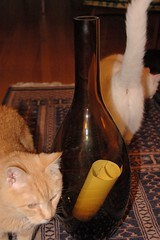 Giant Chianti Vase with Cats