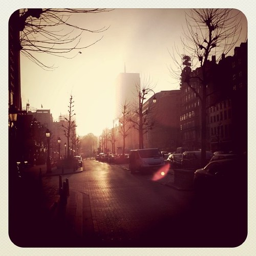 Morning in Brussels