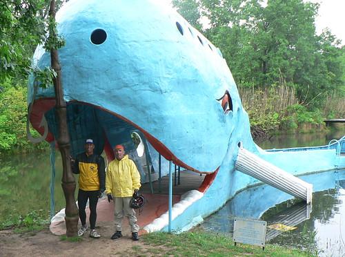 Famous Blue Whale