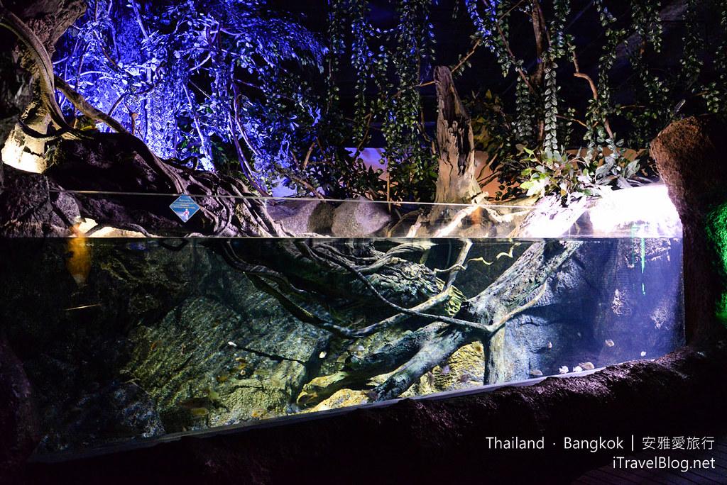 Siam Ocean World Bangkok 29