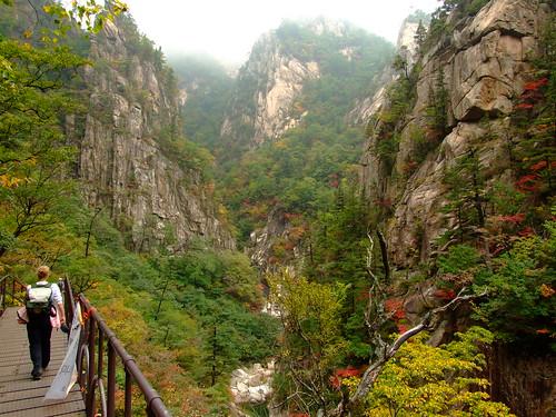 Seorak mountain 229