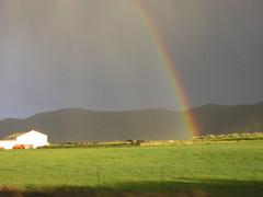 mas arco iris