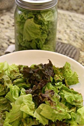 Preserving Lettuce in Mason Jars_2