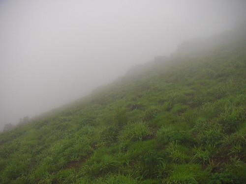 Fog! Rain!