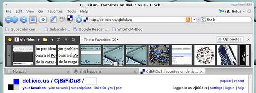 Flock-flickr.jpg