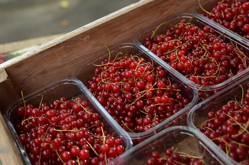 Redcurrants from Sotwell Manor Fruit Farm