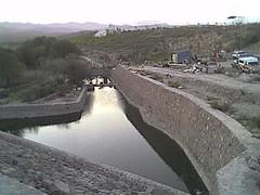 Asomándose desde el puente