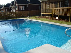 pool with completed deck, landscaping in place