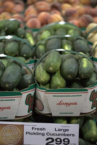 Fresh Large Pickling Cucumbers