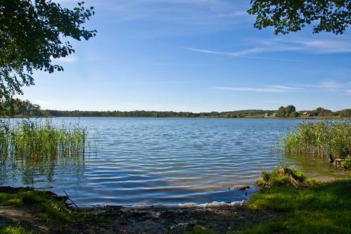 Minkelių ežeras