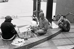 Chess or Mac?