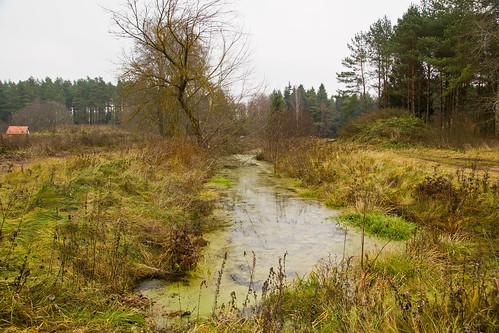 Bezdonės upelis