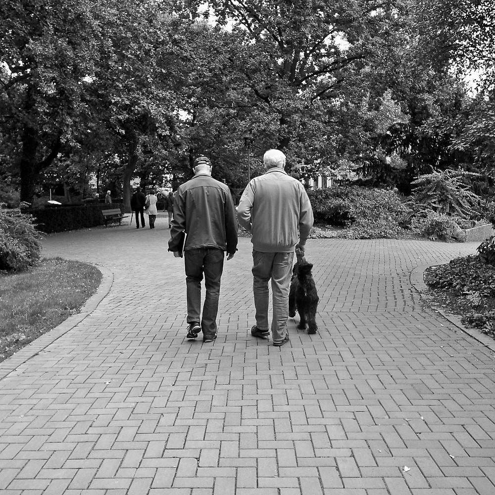 Vater - Sohn - Hund