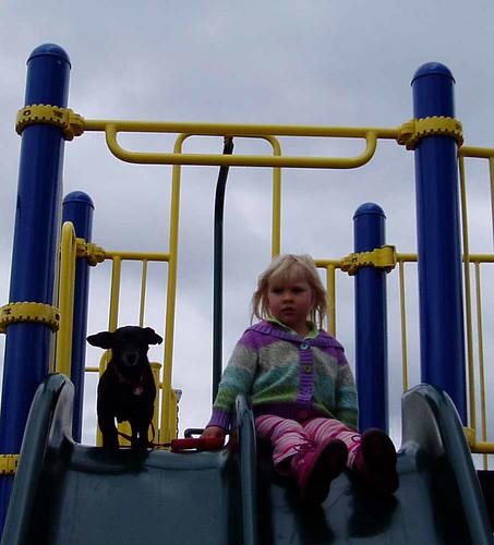 dog and kid on slide