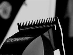 Hair Cut?