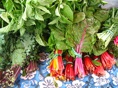 swiss chard at the SF Ferry Building Farmer's Market