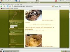 our blog on ubuntu 6.06 Dapper Drake
