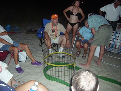turtle watch '06