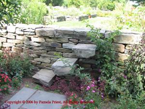 12August2006 Cornell Plantations 063c