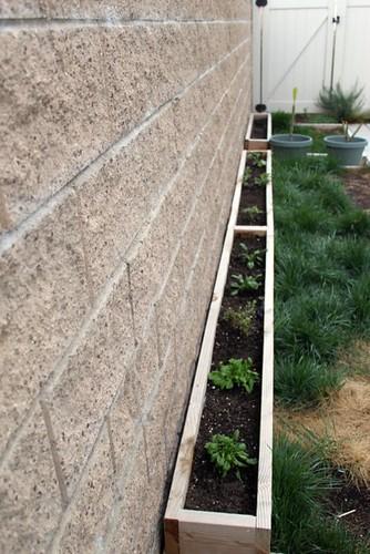 Grass Veggie Planter