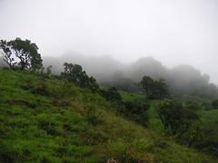 Fog land