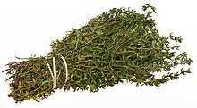 7165339937 6c694338c2 Nine Healing Herbs You Can Grow Yourself in a Healing Garden